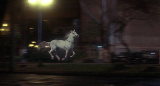 missing-costa-gavras-cheval-dictature-680x369